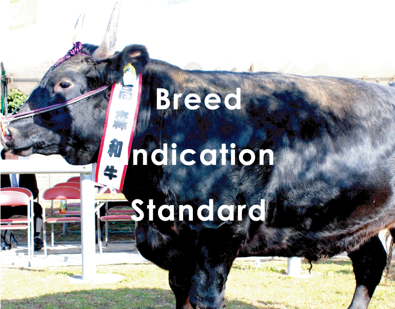 Breed Indication Standard